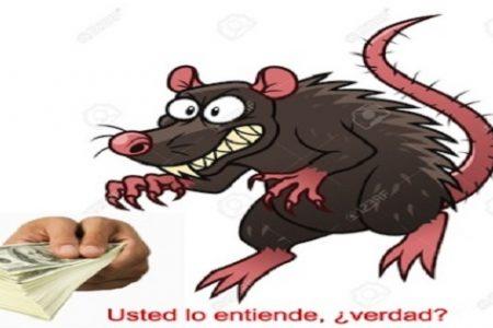 'Ratas' o hijos del régimen…