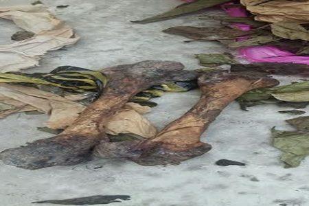 Vídeo: Detienen en Bata a un hombre con una maleta que contenía huesos humanos