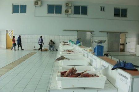 Global Pesca demandara a Guinea Ecuatorial por incumplimiento de contrato