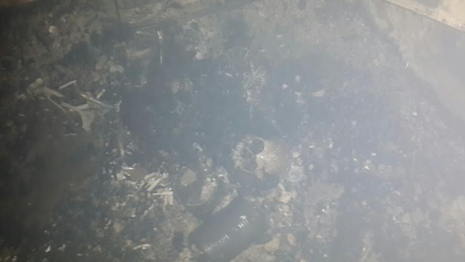 Imágenes de cráneos que se han encontrado en el incendio